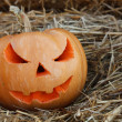 Halloween pumpkins on hay — Stock Photo