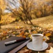 Autumn scene. Coffee cup and books — Stock Photo