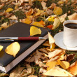 Autumn scene. Coffee cup and books — Stock Photo #18044087