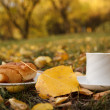 Autumn scene. Coffee and croissant. beautiful day — Stock Photo