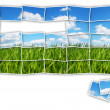 Green field mosaic — Stock Photo #18044507