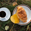 Autumn scene. Coffee and croissant. beautiful day — Stock Photo #18045049