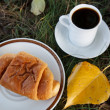 Autumn scene. Coffee and croissant. beautiful day — Stock Photo #18045147