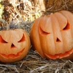 Halloween pumpkins — Stock Photo #18045567