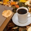 Autumn scene. Coffee cup and books — Stock Photo #18045893