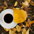 Coffee cup and yellow autumn leaf — Stock Photo