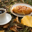 Autumn scene. Coffee and croissant. beautiful day — Stock Photo #18046353
