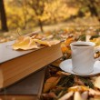 Autumn scene. Coffee cup and books — Stock Photo #18046779