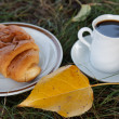 Autumn scene. Coffee and croissant. beautiful day — Стоковая фотография