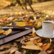 Autumn scene. Coffee cup and books — Stock Photo #18046937