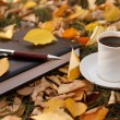 Autumn scene. Coffee cup and books — Stock fotografie