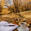 herfst scène. Koffiekopje en boeken — Stockfoto