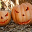 Halloween pumpkins — Photo