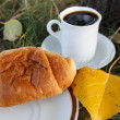 Autumn scene. Coffee and croissant. beautiful day — Stock Photo #18047165