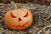 Halloween pumpkins on hay — Stock Photo