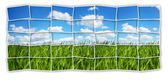 Green field mosaic — Stock Photo