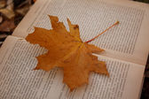 Yellow leaf on a book — Stock Photo