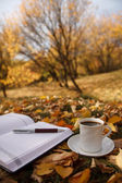 Autumn scene. Coffee cup and books — Zdjęcie stockowe