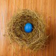 Royalty-Free Stock Photo: Easter egg in a nest