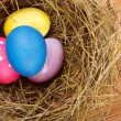 Easter Nest with Eggs on the table — Stock Photo