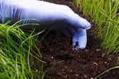 Praca ogrodnika — Zdjęcie stockowe