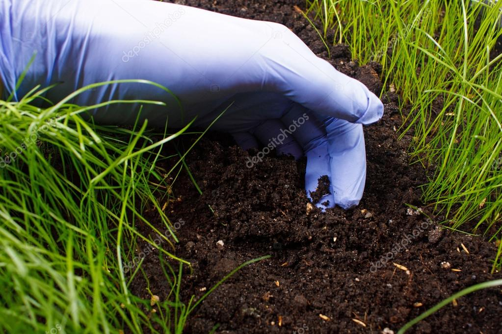 обзор фирм-производителей ищу садовника в фирсановке термобелье