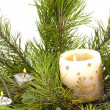 The candle on the brach of tree — Stock Photo
