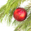 The christmas balls on the brach  — Stock Photo