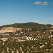 Spanish landscape outside Olvera, Spain — Stock Photo