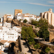 Setenil de las Bodegas is one of the pueblos blancos (white vill — Stock Photo #34219793