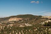 испанский пейзаж за пределами ольвера, испания — Стоковое фото