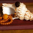 Stock Photo: Amber necklaces on seashell