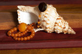 Amber necklaces on seashell — Stock Photo