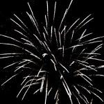 Celebration fireworks — Stock Photo #4264435
