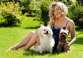 A beautiful young blond girl in the park with dogs — Stock Photo