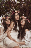 Triple beauty portrait of women — Stok fotoğraf
