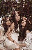 Triple beauty portrait of women — Стоковое фото