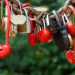 A lot of marriage love locks — Stock Photo #41648039