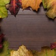 Colorful autumn leaves frame on wooden background — Stock Photo