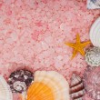 Stock Photo: Pink bath salt and seashells background