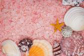 Sfondo di rosa bagno sale e conchiglie — Foto Stock