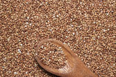 Buckwheat with brown wooden spoon — Stock Photo