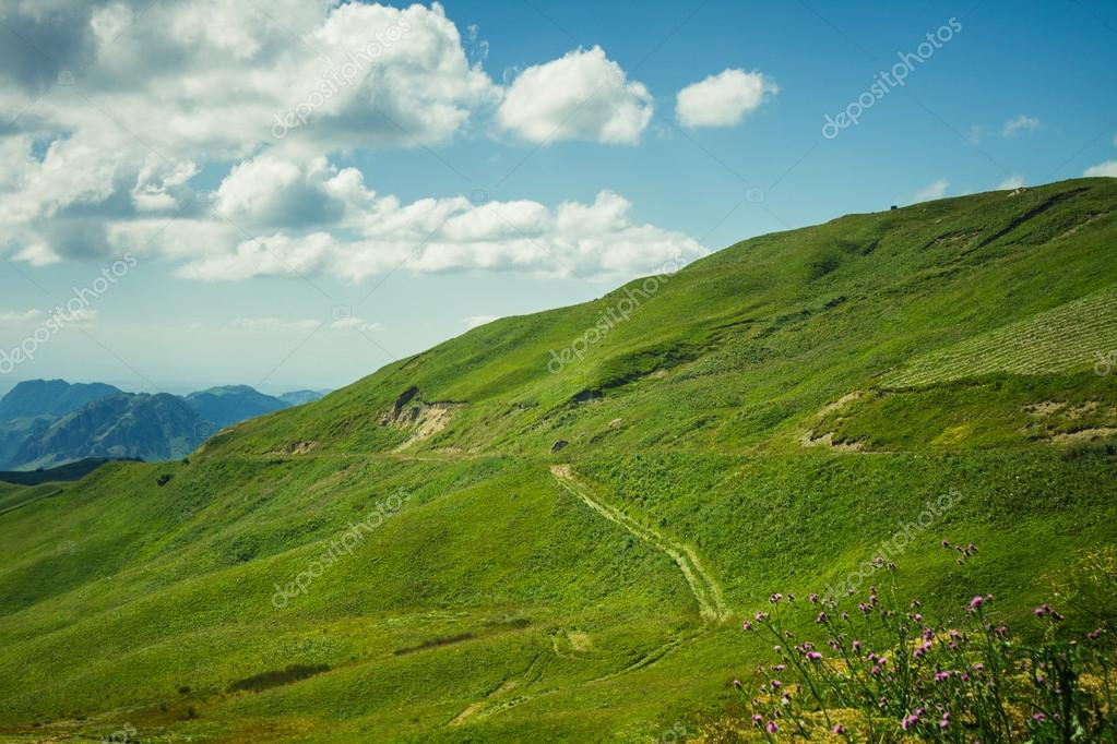 Summer mountains green grass and blue sky landscape — Stock Photo #20421539