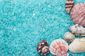 Blue bath salt and seashells — Stock Photo