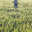 Girl running across green field in the morning — Stockfoto