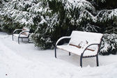 L'image d'un banc de neige-couvertes — Photo