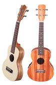 Hawaiian guitar — Stock Photo