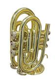 Trompet — Stockfoto