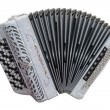 Accordion — Stock Photo