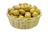 Bucketful of potatoes — Stock Photo